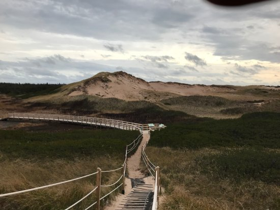 Charlottetown, Canadá: Greenwich, sand dunes