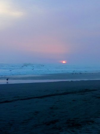 Camana, Peru: DSC_0617_large.jpg