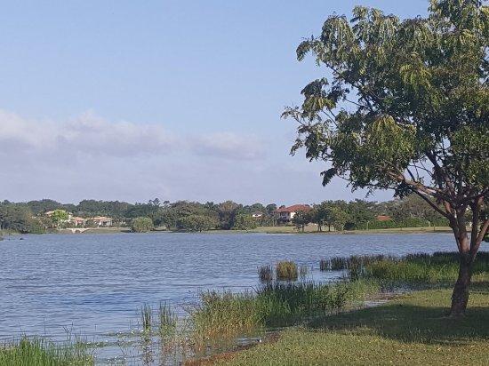 巴拿馬高爾夫及海灘 JW 萬豪渡假村張圖片