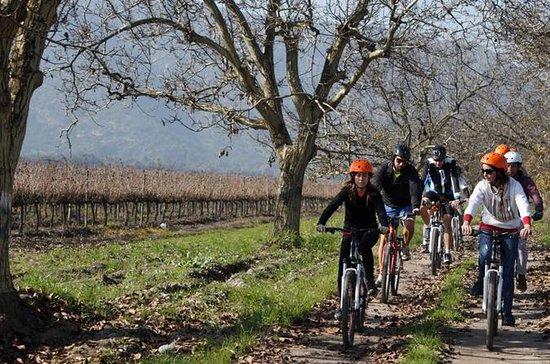 Excursion d'une journée à vélo privée...