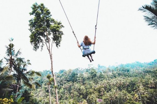 Lo mejor de Ubud Tour con Jungle Swing