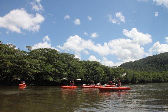 Iriomote Island Canoe Touring Atarasu
