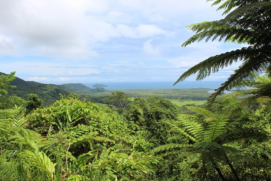 Cape Tribulation, Australië: The view from Alexandra Lookout