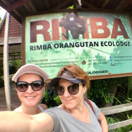 Rimba Orangutan Eco Lodge: photo0.jpg