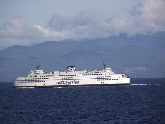 Nanaimo, Canada: Ferry from Isle to horseshoe
