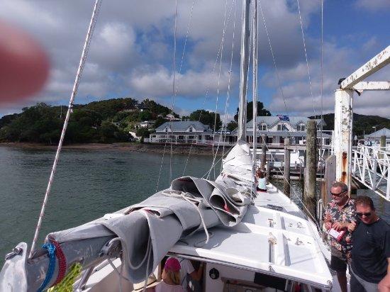 Kerikeri, Nueva Zelanda: IMAG0201_large.jpg