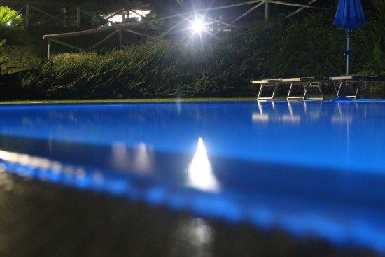 Foto notturna della piscina picture of il giardino sul - Il giardino sul mare ...