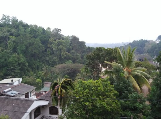 Nature Walk Resort: This is the view from the hotel.