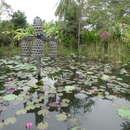 Maisons Wat Kor : photo8.jpg