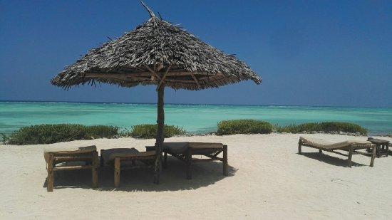 The Zanzibari: IMG_20180125_134323_large.jpg