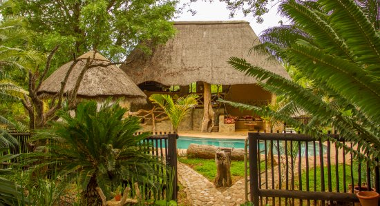 Foto de Mafigeni Safari Lodge