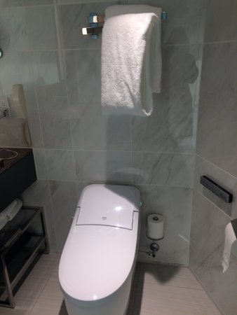 Towel rack above toilet seat - Picture of ANA InterContinental Tokyo ...
