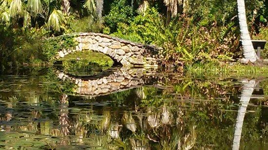 20180117 122519 picture of mckee botanical - Mckee botanical gardens vero beach ...