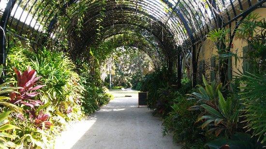 McKee Botanical Garden: 20180117_121702_large