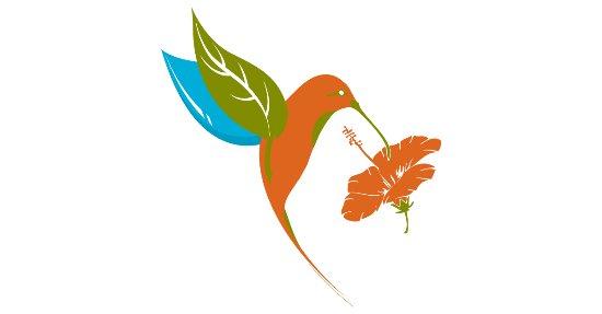 Matagalpa, Никарагуа: Escuela de Español Colibrí