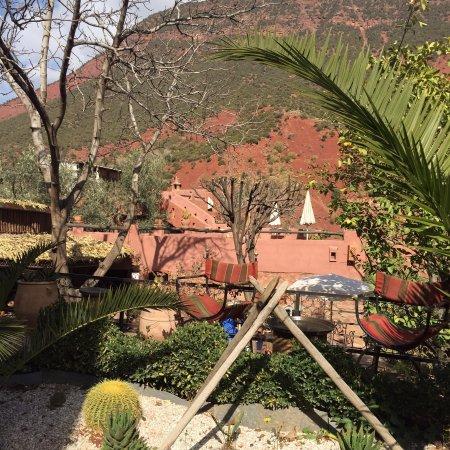 Ourika Garden: photo1.jpg