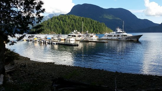 Sunshine Coast, Canada: Looking back at the docks