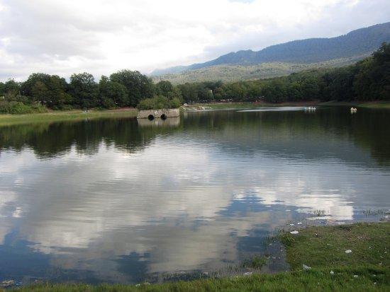 Forest Park and Abbas Abad Pool in Iran-Mazandaran-Behshahr