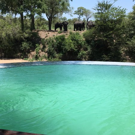 Imbali Safari Lodge: photo0.jpg