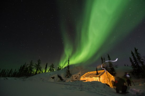 Yellowknife, Canada: The Northern Lights dancing above our tour tent.