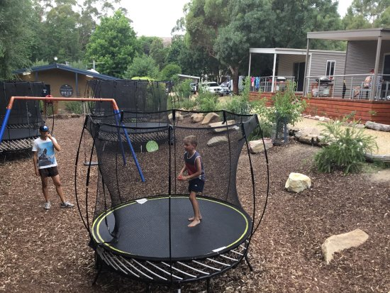 Halls Gap Lakeside Tourist Park: Springfree Trampolines were a great hit with my kids.
