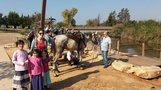 Kfar Vitkin, Israel: The turtles or the horse?