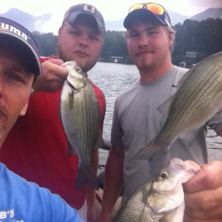 Lake Lure, Carolina del Nord: Another good morning catching white bass.