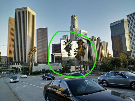 Window View Picture Of The L A Grand Hotel Downtown Los Angeles Tripadvisor