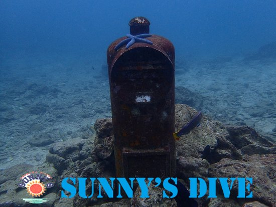 Sunny's Dive