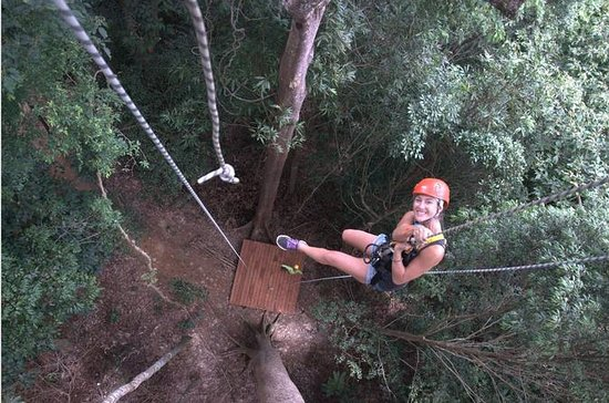 2.5-Hour Umgawa Zipline Tour on...