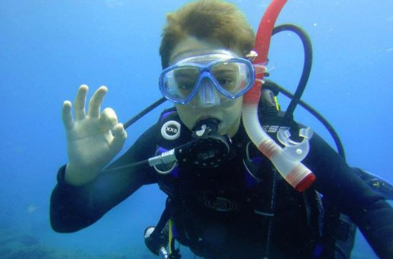 Diving for beginners by boat from Puerto Colon