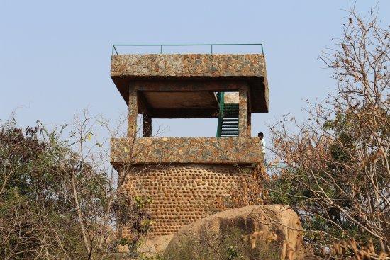 Daroji Bear Sanctuary : watch tower