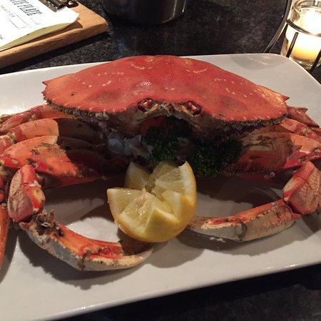 wow, Wow, WOW!!! Best oyster bar