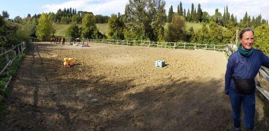 Montespertoli, Italy: pronti per la lezione