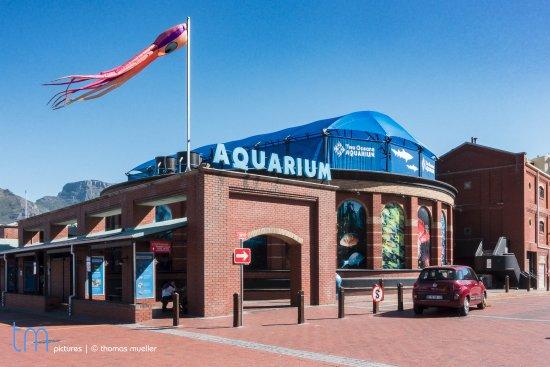 geb ude von au en foto de two oceans aquarium cidade do cabo central tripadvisor. Black Bedroom Furniture Sets. Home Design Ideas