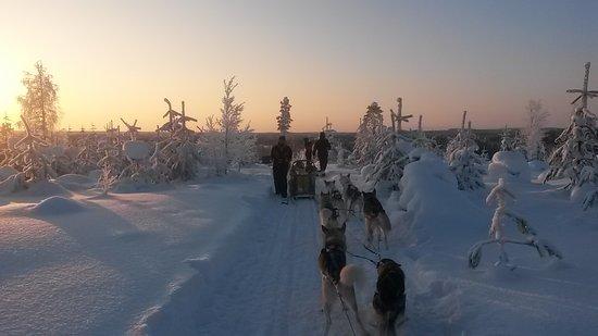 Taivalkoski, Finlandia: 20180201_143537_large.jpg