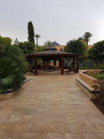 Hotel Riu Tikida Garden : 20180131_085501_large.jpg