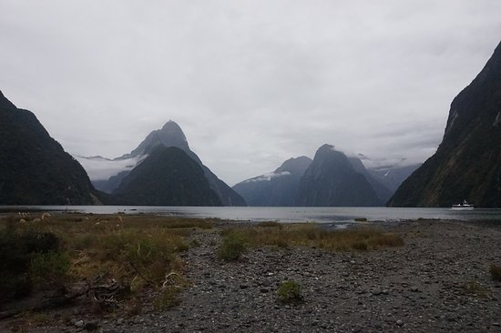 Milford Foreshore Walk: View of mountains from foreshore