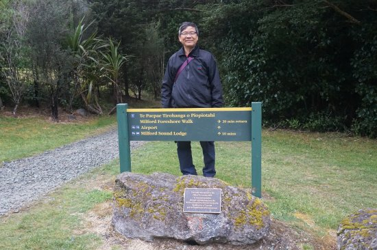 Milford Foreshore Walk: More signboards