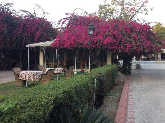 Naila Bagh Palace : Reception