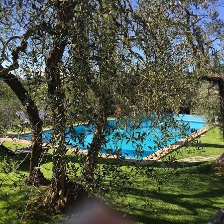Monteleone d'Orvieto, İtalya: Relais gli Ulivi