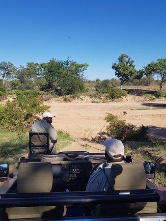 Timbavati Private Nature Reserve, Sudáfrica: 20180113_160556_large.jpg