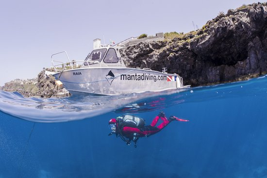 Manta Diving Madeira