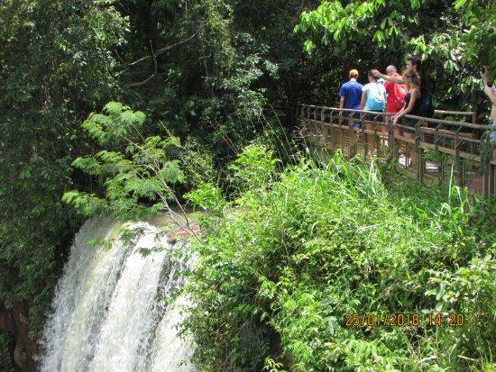 Passando Por Cima Da Cachoeira Picture Of Parque