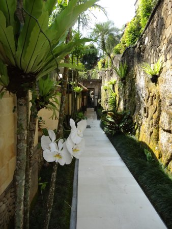 Viceroy Bali : Entrance to Vice Regal 1
