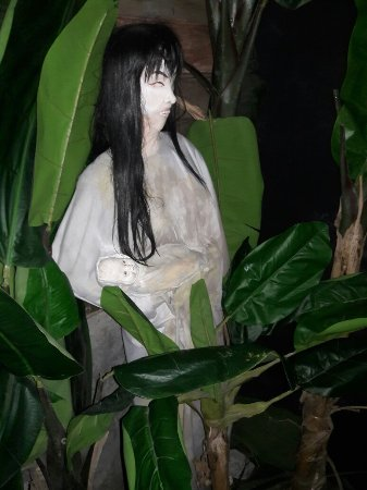 Ghost Museum Penang: First ghost museum in malaysia..  Fee rm 18 for visitor from malaysia Fee rmb28 for visitor over