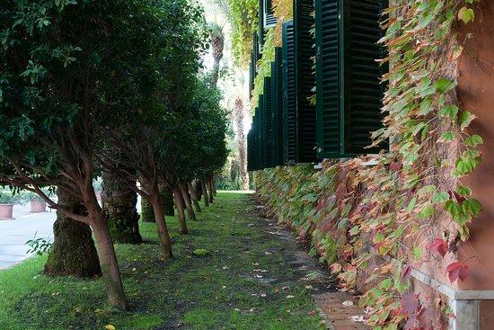 Jardin milenio hotel elche espagne voir les tarifs for Jardin milenio