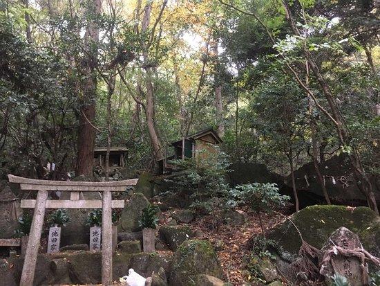 岩谷の滝 大聖院