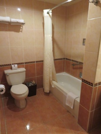 DoubleTree by Hilton Hotel Cariari San Jose: Bathroom in room 1112.