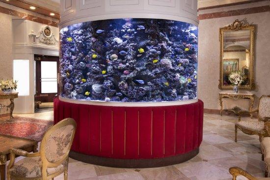 The Kimberly Hotel: Lobby